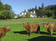 Craigadam B&B, Dumfries and Galloway, Scotland