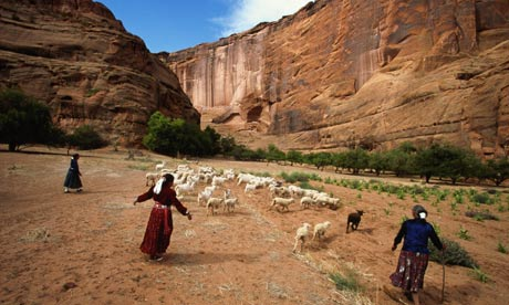 Navajo women herding sheep