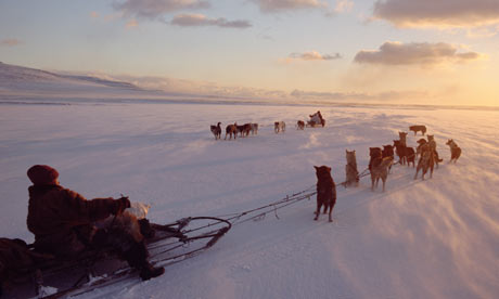 sledding Siberia Russia