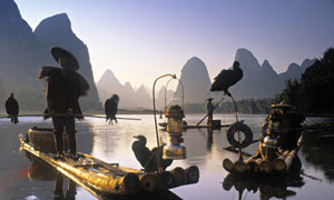 Cormorant fishermen, Guangxi, China