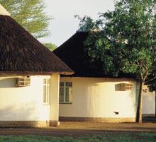 Kruger National Park, near Nelspruit