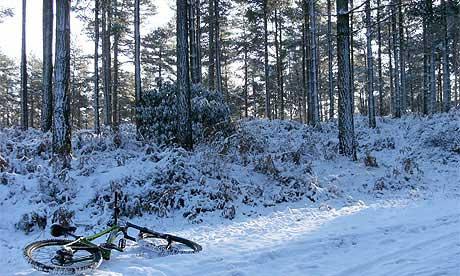 Bike in the snow