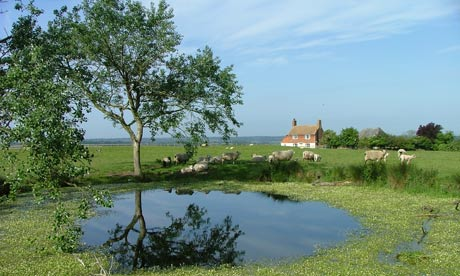 Coldharbour Cottage, Kent, farm stay