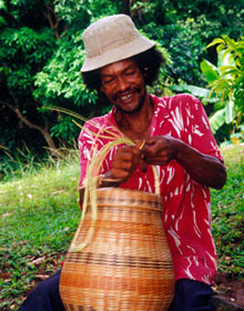 Indian weaving basket from L'arouma reed, Dominica, Caribbean
