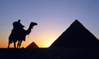 Camel and pyramid, Egypt