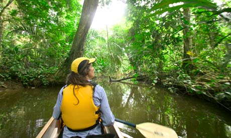 Woman canoeing in rainforest