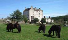 Delgatie Castle, Argyll, Scotland