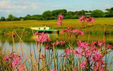 Swallow Tail Houseboat, Devon