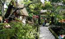 Warsi's House Ubud Bali