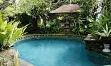 Fibra homestay, Ubud Bali