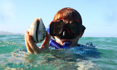 Fiji - Maddy and a cowrie shell