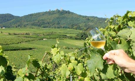 Maison Emile Beyer winemaker, Alsace