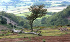 Somerset's Quantock Hills, the birthplace of Romantic poetry