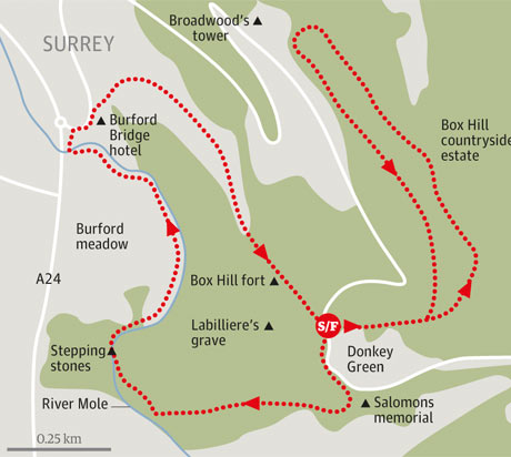 Box Hill walk map