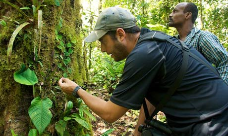 Guide David Yunes (foreground) and a local ranger get up close in the cloud forest