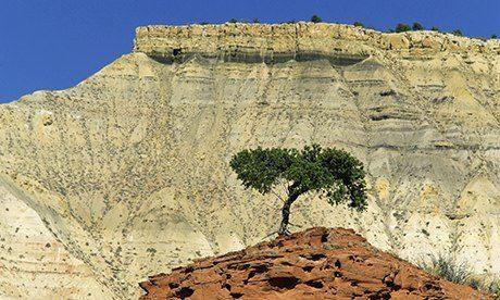 Kodachrome Basin, Utah