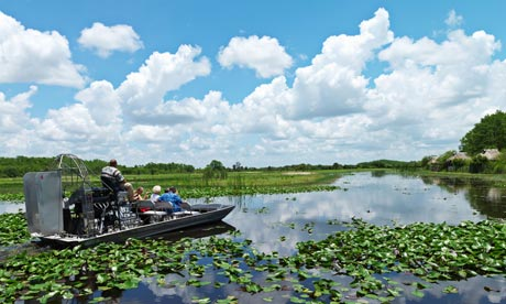 A boat on the Everglades, Florida