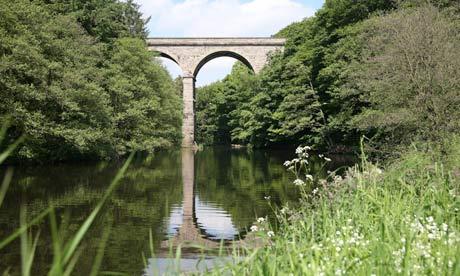 Nidd Gorge viaduct