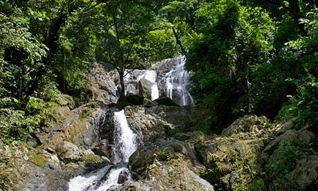 Argyle waterfall inside rainforest, Tobago.