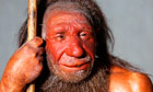 Neanderthals may have feasted on meat and two veg diet