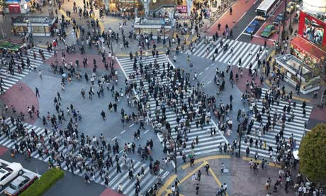 The World's Largest Zebra Crossing