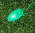 A green computer mouse