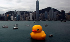 Rubber Duck by Dutch conceptual artist Florentijn Hofman floats on Victoria Harbour in Hong Kong