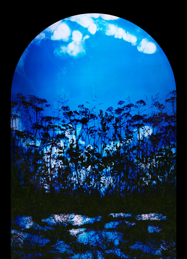 Susan Derges S Best Shot Art And Design The Guardian