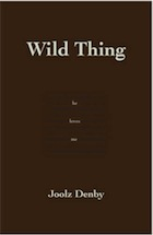 Joolz Denby: Wild Thing- book review