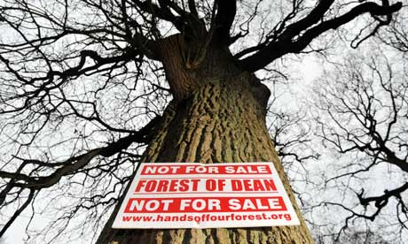 Forests sell-off plans  : Forest of Dean