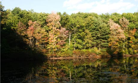 Walden pond in Concord, Massachusetts inspired famous writer Henry David Thoreau