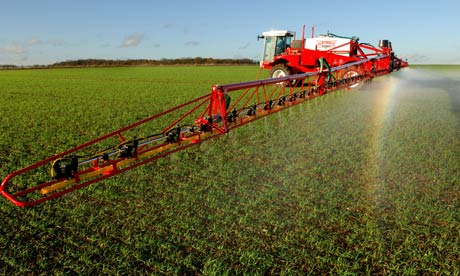 Neonicotinoids are the new DDT killing the natural world