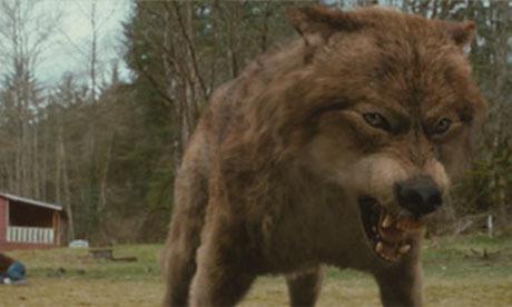 jacob black werewolf transformation - photo #35