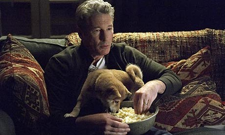 Hachi: A Dog's Tale   Film   The Guardian