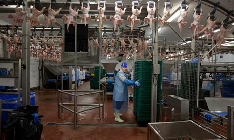UK: Meat Packers United