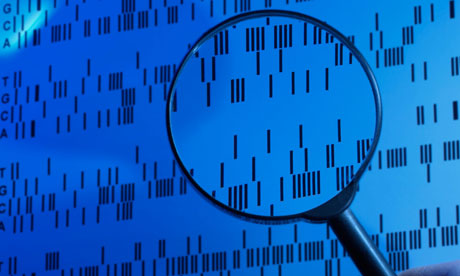 the advancement of dna testing in criminal trials and its benefits Rapid dna technology to revolutionize arrestee screening written there have been many reported cases where arrestee dna profiles have been linked to dna recovered in previously unsolved crimes and the investigations of those crimes have been furthered rapid dna testing on its own.