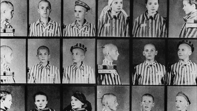 Águila en la Roca, La Libertad de Investigación.   Documental Auschwitz, los nazis y la solucion final: 1- Inicios sorprendentes (Marzo 1940- Sept 1941) Documental Auschwitz, los nazis y la solucion final: 2- Ordenes e iniciativas  Documental Auschwitz, los nazis y la solucion final: 3- Fabricas de muerte Documental Auschwitz, los nazis y la solucion final: 4- Corrupcion  Documental Auschwitz, los nazis y la solucion final: 5- Muerte descontrolada