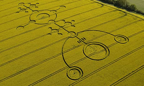 Crop circle in a field of oilseed rape at Clatford, Wiltshire created 4 May 2009