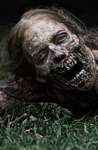 walking dead another zombie