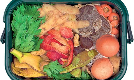 Food waste for compost
