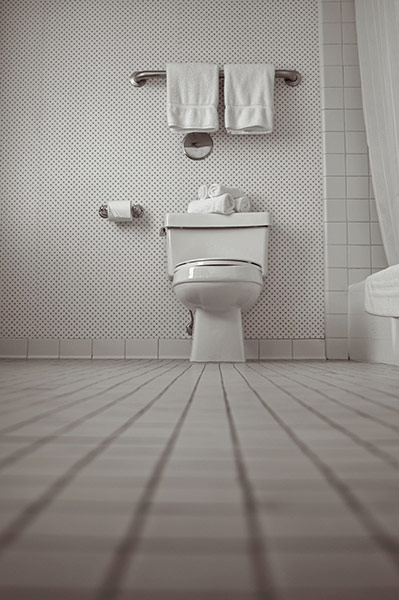 germs: Toilet