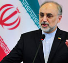 The Iranian foreign minister, Ali Akbar Salehi