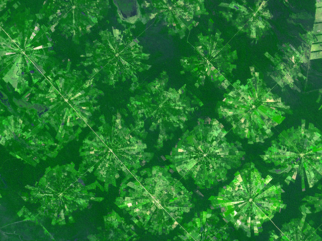 Agricultural Pattern: Near Santa Cruz, Bolivia, the pie-shape or radial-pattern fields