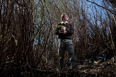 Andy Hamilton with Knotweed