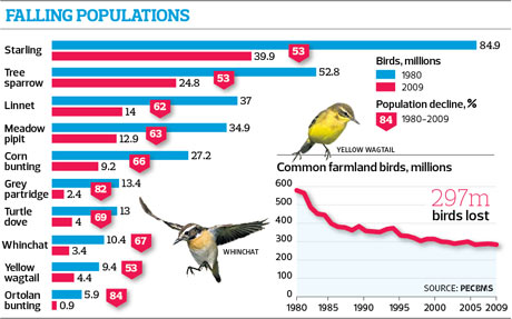 How EU farming policies led to a collapse in Europe's bird population