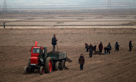 North Korean Children Suffer a State of Dire Food Security