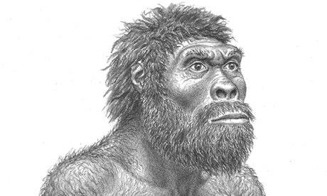 Ricostruzione di Homo erectus