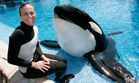 POLL: Should whales and dolphins be kept in captivity for our entertainment?