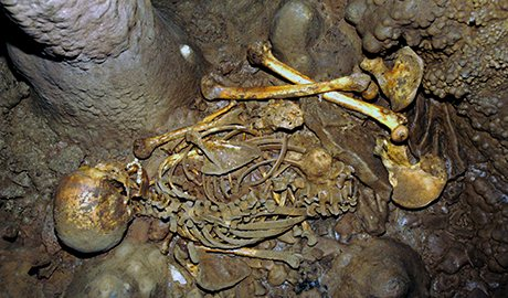Skeleton of a Mesolithic hunter-gatherer