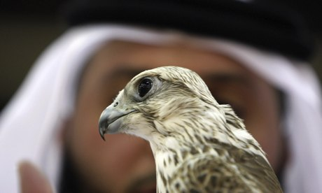 Pakistan urged to ban Arab sheikhs from hunting endangered birds